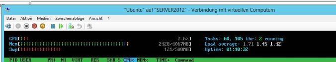 ubuntu_13_10_htop